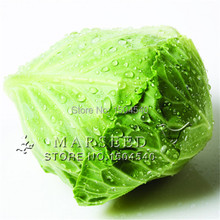 100 seeds Four Seasons cabbage seeds small vegetables seeds good tasty