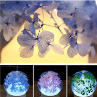 DC 12V Household Aromatherapy Oil Air Humidifier Mini Air Purifiers Flower Air Humidifiers 7 Color Night Light 60Min Timer