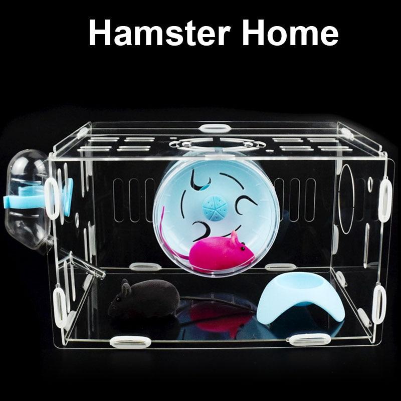 1 pièces cochon d'inde Cage Hamster petit Animal maison bouteille d'eau potable lit Chinchilla roue de course animaux accessoires fournitures