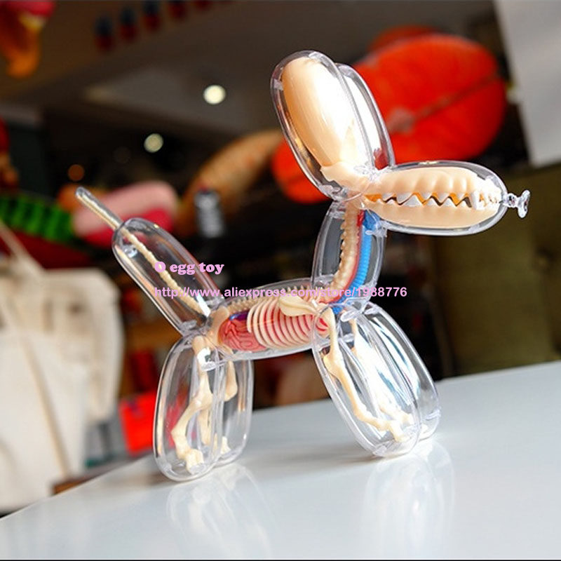balloon dog 4Dmaster animal model Action Toy Figures by jason freeny Naked dog  art can see through the body dog for collection jason freeny balloon dog jelly bear perspective anatomical skeleton model 4 dmaster novelty toys creative gifts