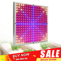 Full Spectrum LED Grow Light 30W Fitolamp Red Blue Yellow 290LEDs SMD3528 Led Plant Lamp Hydroponic Greenhouse Grow Tent