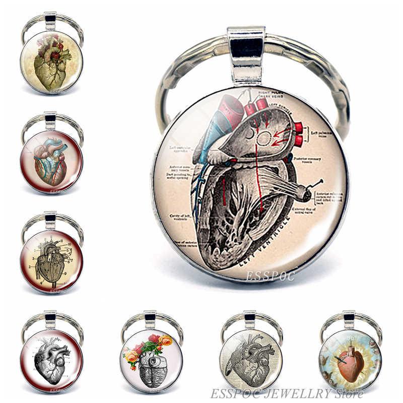Anatomi Jantung Gantungan Kunci Perak Gantungan Kunci Kaca Logam Gantungan Kunci Gantungan Kunci Detak Jantung Tanda Liontin Ahli Biologi Dokter Hadiah