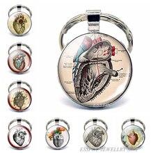 Анатомический брелок для ключей в форме сердца, металлический брелок для ключей из стекла, брелок с подвеской в виде сердечного ритма, подар...