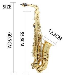 Image 5 - Saxofón Alto de latón Eb saxofón lacado oro con funda de transporte guantes de tela de limpieza cepillo correa para saxofón cepillo para boquilla silenciosa