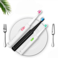Travel Toothbrush Smart Automatic Ultrasonic Toothbrush Eco Friendly USB Waterproof Sonic Electric Toothbrush