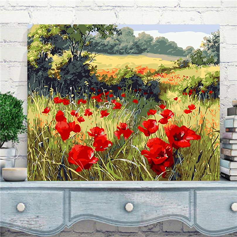 Wild red poppy flower pictures by numbers new design canvas oil painting by numbers fashion pictures on the wall art AL009