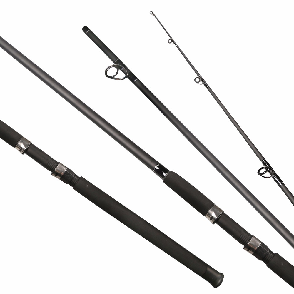 2 1 2 4 saltwater fishing rod fishing pole action h for Ocean fishing rods