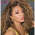 1b/30 предварительно Синтетические волосы на кружеве парик глубоко вьющиеся синтетические волосы парик короткие влажные и волнистые человеч...