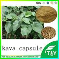 100% Natural  Kava Extract Capsule 500mg x100pcs