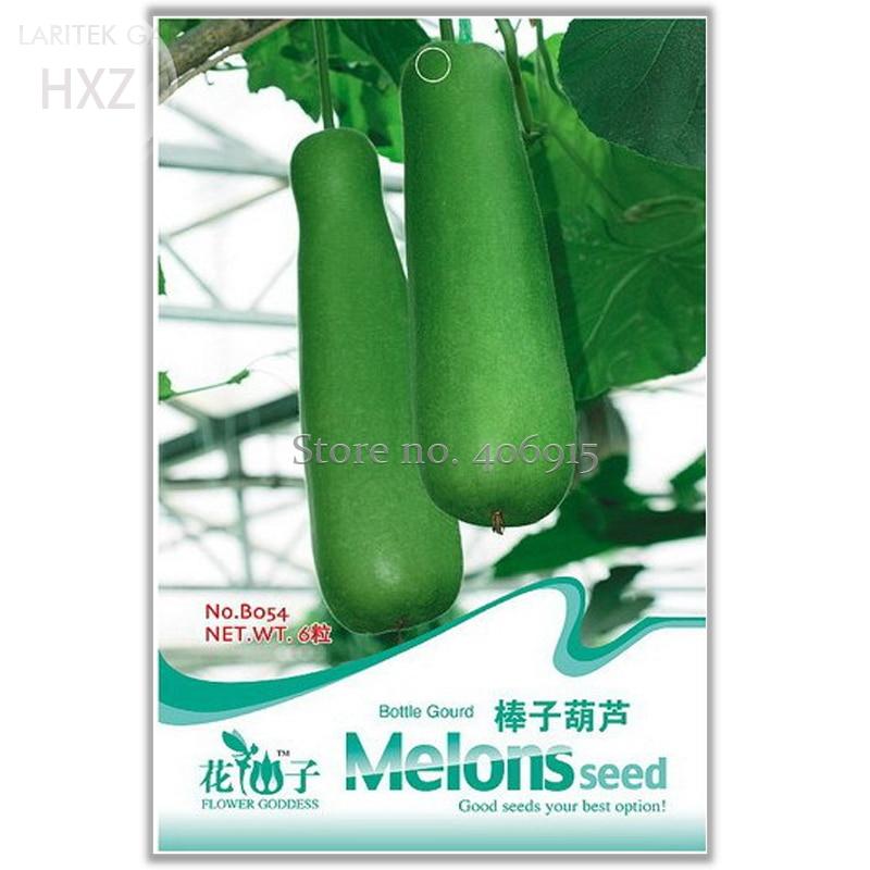 Heirloom Green Bottle Gourd Seeds, Original Package, 6