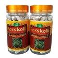 1 Garrafa 20% Forskolin Coleus Forskohlii Extrato Cápsulas 500 mg x 90 pcs frete grátis