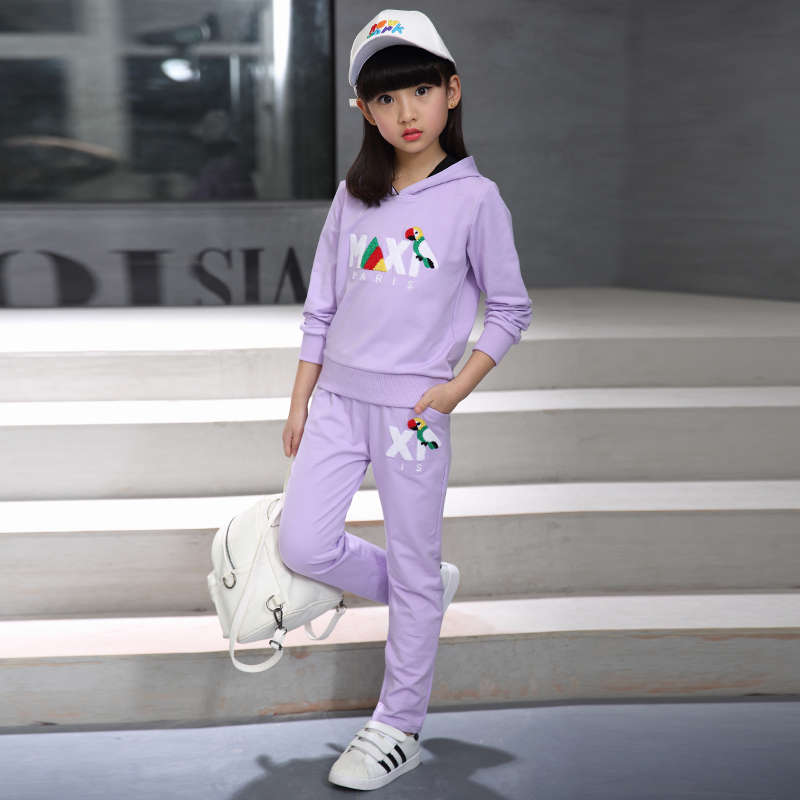 ФОТО 2017 Brand Girl Sport Print Flower Clothing Set for Autumn Spring Long Sleeve+ Pants Clothes Set Kid School Cute Clothes Set