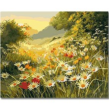 WEEN Wild flowers-DIY Framed Oil Painting By Numbers, Coloring Modern Wall Art Picture,Home Decoration 40x50cm