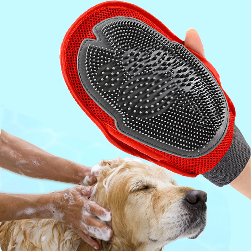 Bath Brush Dog Grooming Service
