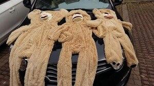 Image 3 - מכירת צעצוע גדול גודל 200cm ענק אמריקאים דוב עור, דובון מעיל, טוב באיכות Factary מחיר רך צעצועי עבור בנות