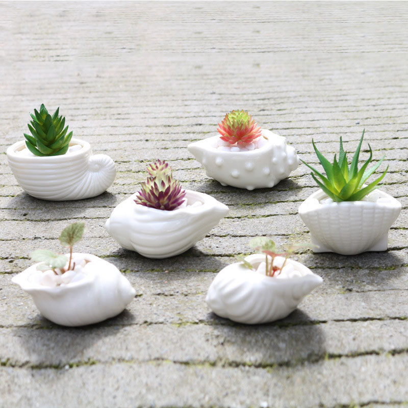 6pcs/set Mini White Small Flowerpot Shell Shape Ceramic Succulent Plant Pot Holder Fairy Garden Cactus Flower Pots Planter