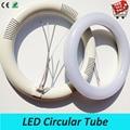 11W 12W 18W 20W 205mm 225mm 300mm led circular fluorescent tube G10q