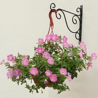 2pcs Multi European Style Flower Racks Iron Simple Wall Flower Basket Frame Shelf Hanging Balcony Creative
