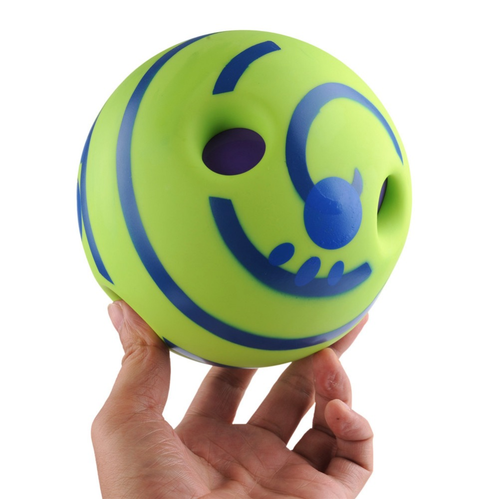 Trainer Balls with Funny Sound toy