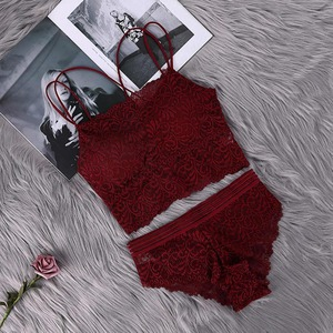 Transparent Lace Bra and Panty Set Women Sexy Lingerie Bra Set Intimates Ladies Underwear Set(China)