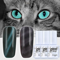 Nail Gel Cat's Eye Color Need Magnet Cat Eye Colorful Soak Off Gelpolish Magnetic Cat Eye Gel Nail Polish UV Curing