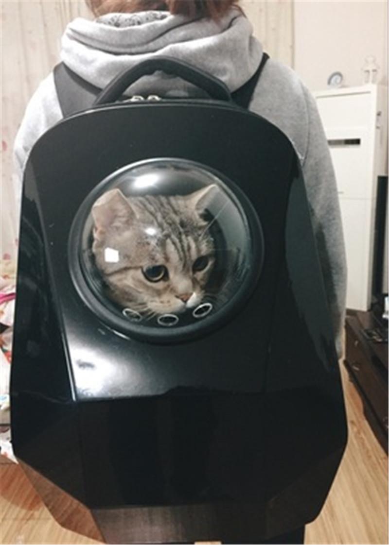 pet bag backpack21