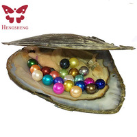 1 PC Freshwater Pearl Oyster Cultured Oyster with 20 pcs 6 8 mm Nearly Round Pearls Inside Party Gifts Love Wish (Multi Color)