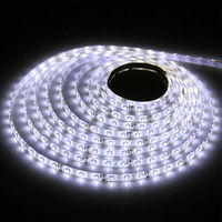 Hot Sales!5M Waterproof LED Strip 3528 SMD 12V flexible light 60 led/m Warm White/Cool White/ Red/Blue/Green 300 LED strip