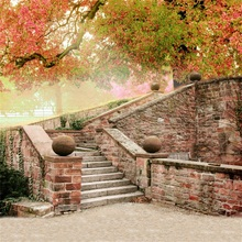 Laeacco Old Staircase Entrance Brick Stone Wall Autumn Tree Maples Scene Photo Background Photography Backdrops For Studio