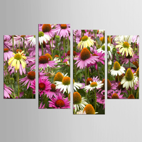 HOT frame 4pcs / set beautiful chrysanthemum wall art wall decoration home decoration canvas canvas printing oil painting