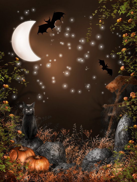 8X10ft Halloween party backgrounds Thin vinyl cloth photography backdrops computer Printing backdrops for photo studio Ha-0578X10ft Halloween party backgrounds Thin vinyl cloth photography backdrops computer Printing backdrops for photo studio Ha-057