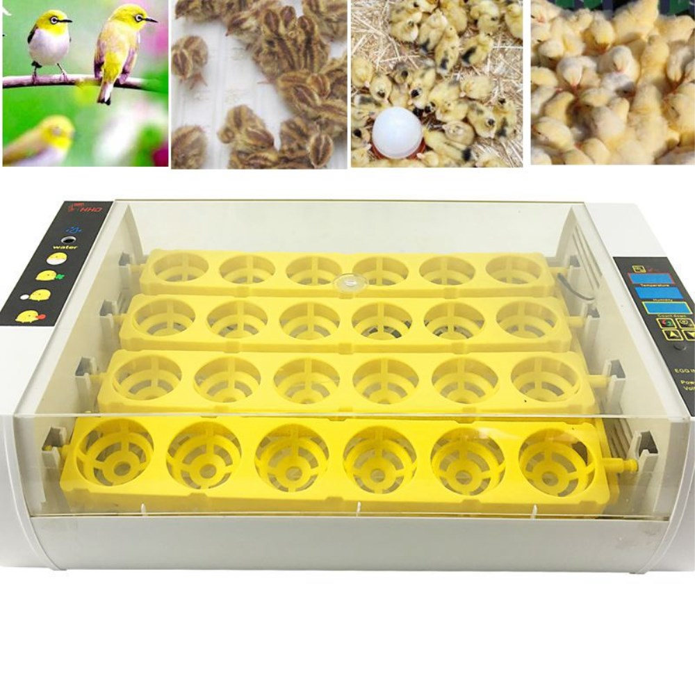 High Quality Automatic Brooder 24 Eggs Turning Incubator Chicken Hatcher Temperature Control 24 eggs mini incubator automatically eggs turning hatcher machine chicken experimental teaching equipment