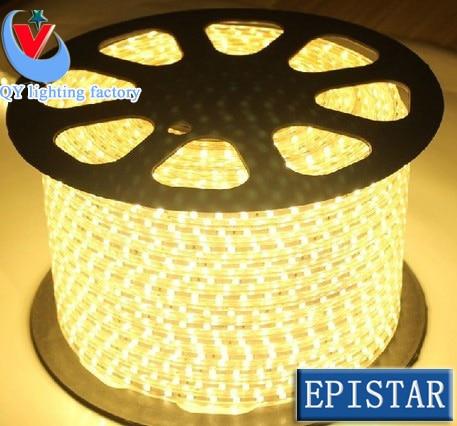 220V SMD 3014 led strip flexible light 1m 2m 3m 4m 5m warm white/white/Blue Power plug ,120leds/m waterproof led Strips