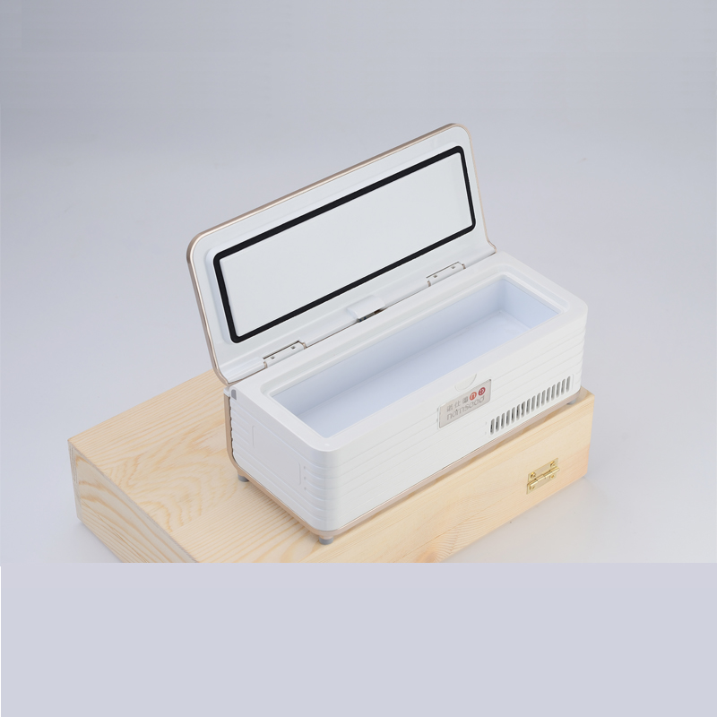 Rechargeable Portebla Buitenshuis Voyage Small Fridge Portebla Insulino Vaccin Blood Interferon Cooler Medication Reefer Case