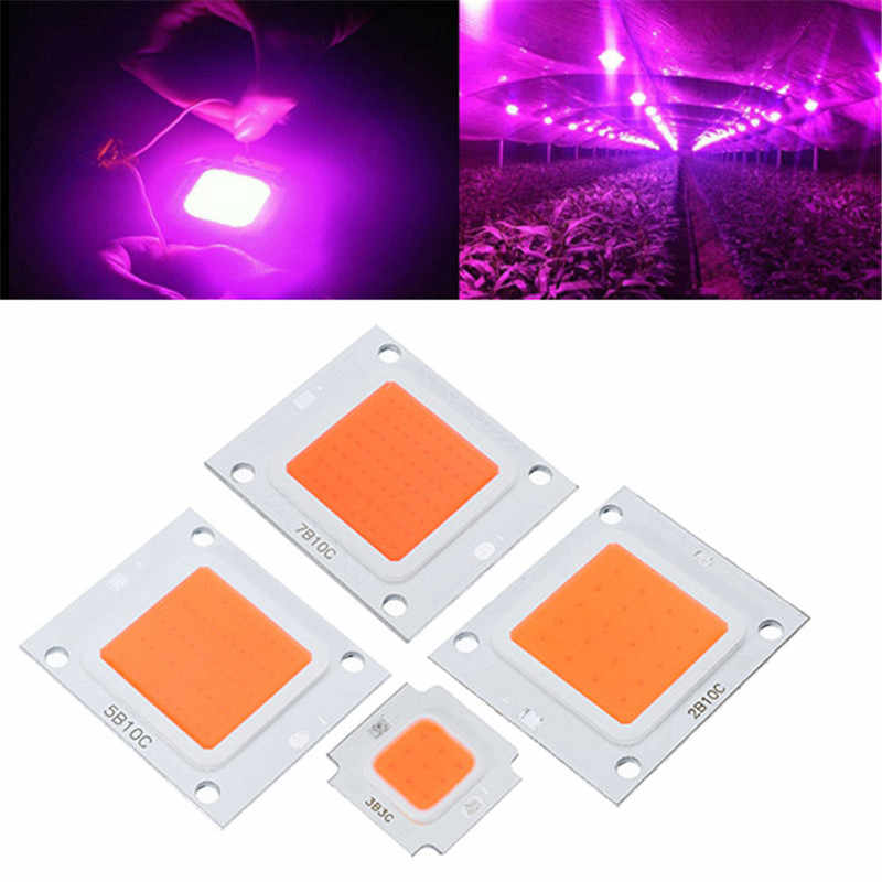 CLAITE Full Spectrum LED Grow Light Chip 10W 20W 30W 50W 70W 100W DC9-10V / DC20-32V for Indoor Plant Grow Light Chip
