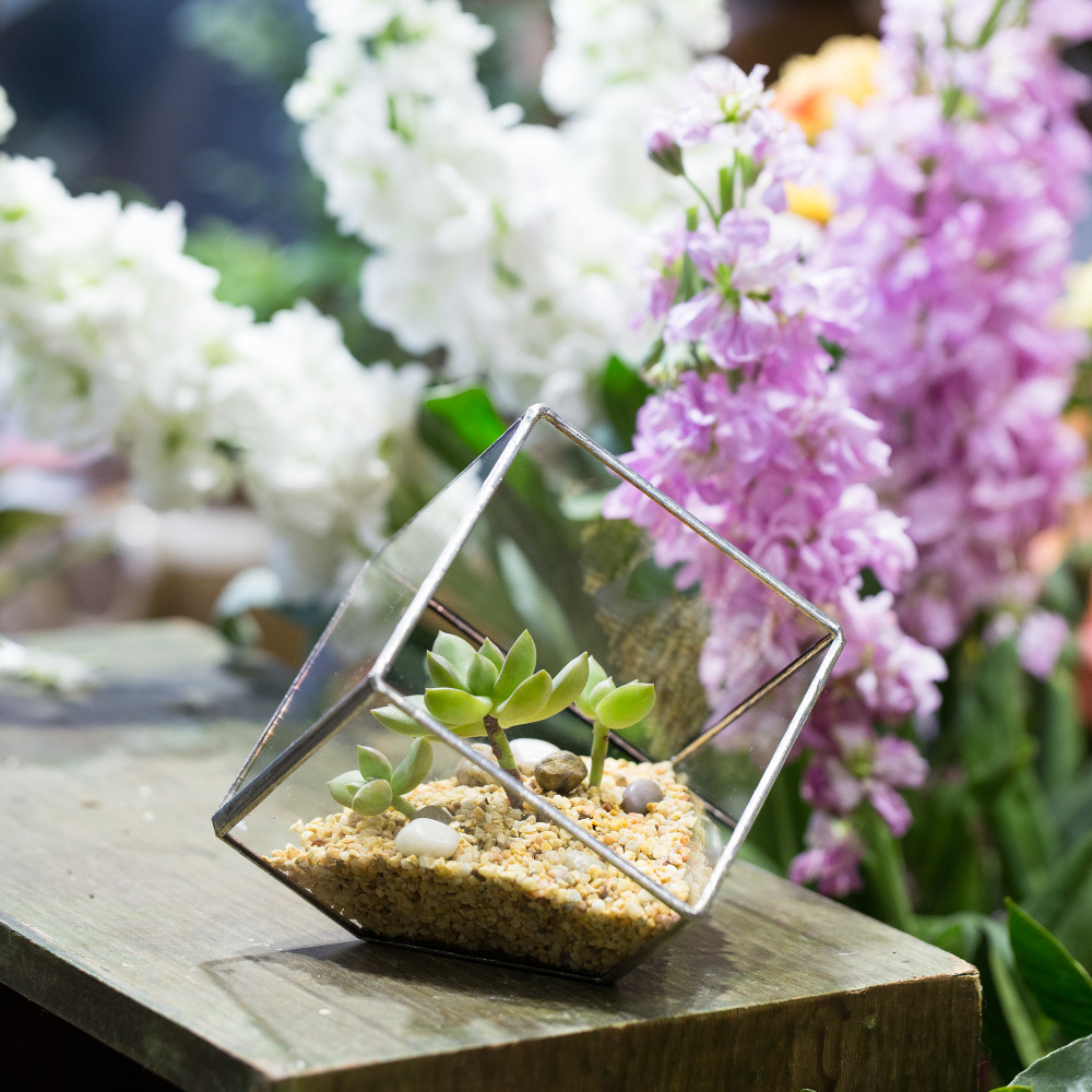 5.9inches Silver Squares Inclined Cube Glass Geometric Terrarium Tabletop Succulents Plant Display Planter Flower Pot Decorative