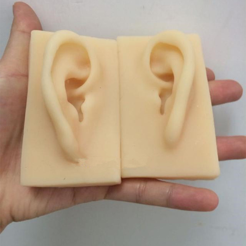 2 Pcs 1:1 Natural Size Ear Model Life Size Silicone Ear Acupuncture Practice Model Simulation Model of The Ear Right and Left new 2pcs female right left vivid foot mannequin jewerly display model art sketch