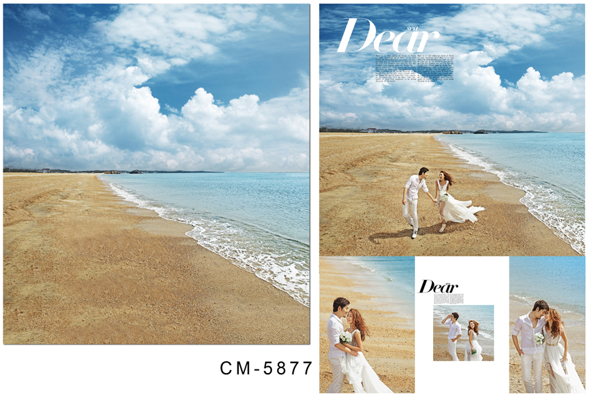 Customize vinyl cloth print 3 D sea beach holiday wallpaper photo studio background for lovers photography backdrops CM-5877