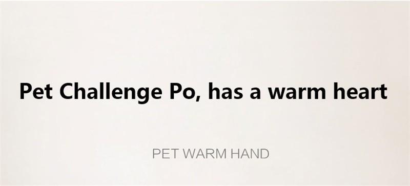 New High quality Hand Warmer Power Bank 4500mah (3)