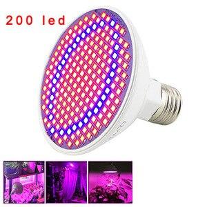 Image 4 - 36 200 290 LED bitki büyümek ampul tam spektrum fito phyto büyüyen lamba klip kapalı oda çadırı çiçek sebze sera
