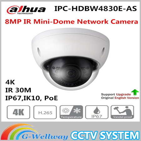 Free Shipping DAHUA Security IP Camera CCTV 4k 8MP IR Mini-Dome Network Camera IP67 IK10 with POE Without Logo IPC-HDBW4830E-AS