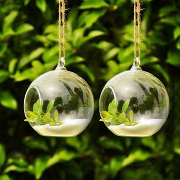 Terrarium Ball Globe Shape Clear Hanging Glass Vase Flower Plants 6