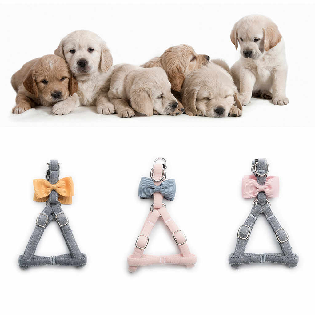 Trsnser Dog Harness Pet Cat Yellow Dogs Cats Tie Bow Vest Set Chest Straps Belt Set Cloth Adjustable Leash Safety 19June20 P30