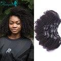 Clip En Extensiones de Cabello Humano Brasileño de la Virgen Del Pelo Afro Rizado 7A rizado Clip En Extensiones de Cabello Humano Clip Afroamericana Ins