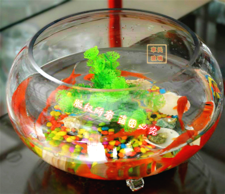 National Free Shipping Round Transparent Glass Goldfish Bowl Turtle