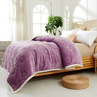 Home Textile Upset Composite Flannel Blanket Super Warm Soft Quilted Double Layer Throw On Sofa Bed Plane Plaids Solid Bedspread