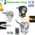 10W 12V LED Underwater Light RGB Warm White Cold White Waterproof IP68 fountain pool Lamp for Lawn Decorating Light LemonBest