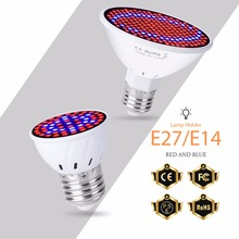 LED Grow Light E27 Full Spectrum Lamp 220V Plant Growing 110V Phyto Led Indoor SMD 2835 Hydroponics Systems 6W 15W 20W