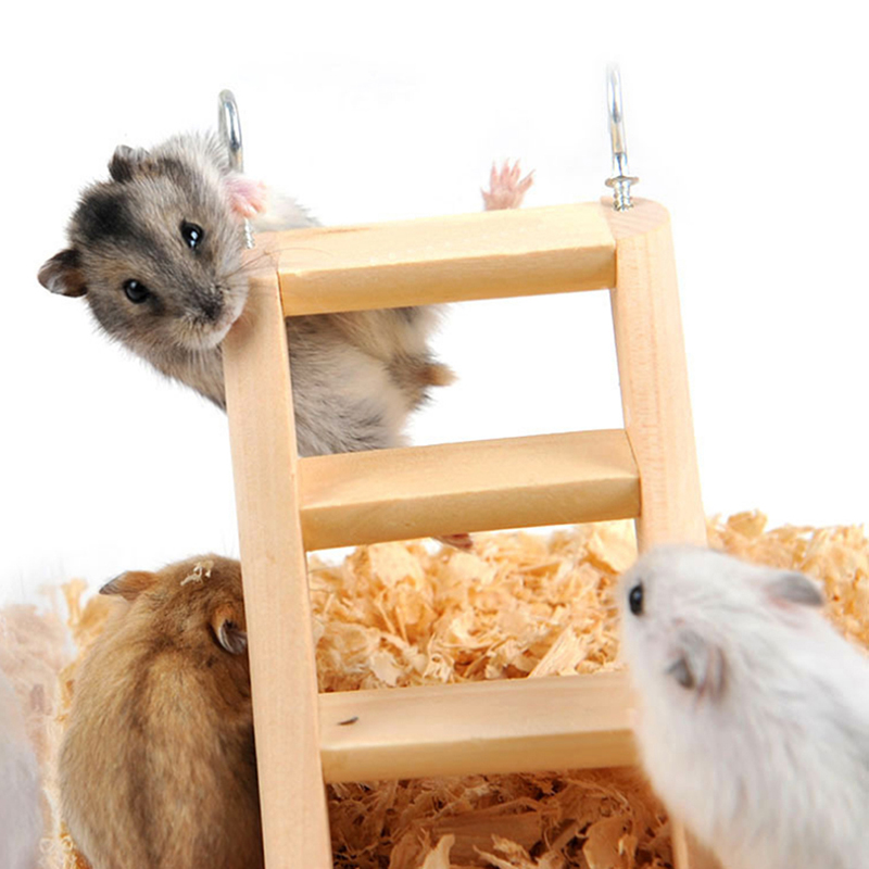Small font b Pet b font Stair Toy Hamster Guinea Pig Toy Ferrets Toy Stairs Wood