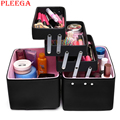PLEEGA New 2017 Women Cosmetic Organizer Makeup Box Large Cosmetic Bag Professional Cosmetic Case 3ce Beauty Vanity Box Suitcase